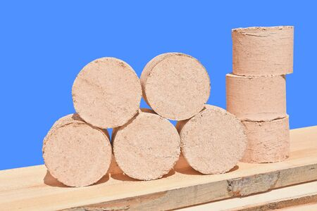 Briquettes fuel from wood shavings of oak and beech. Stock Photo