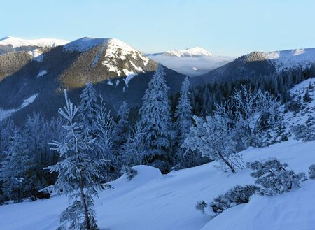 Winter evening in the Carpathians Stock Photo