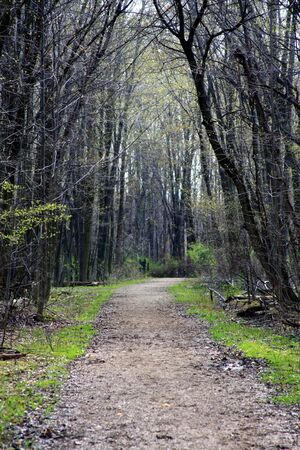 northeast ohio: A Path Less Traveled Stock Photo