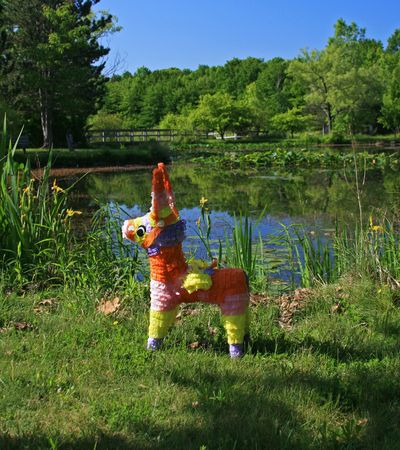 pinata: Pinata visits the Pond Stock Photo