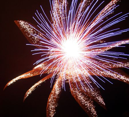 northeast ohio: Flower Explosion Stock Photo