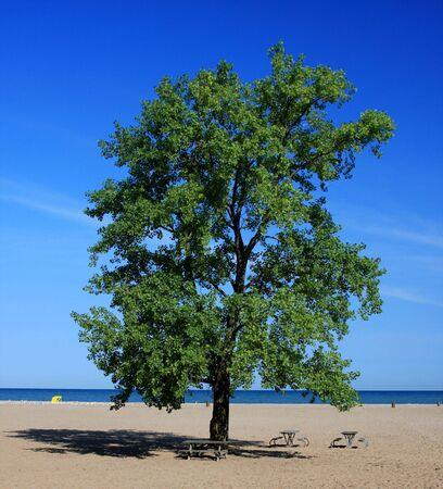 northeast ohio: Sanctuary at the Beach Stock Photo