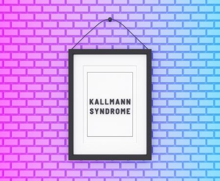 Kallmann Syndrome written on a colorful background. Medicine concept. 3D Illustration. Reklamní fotografie