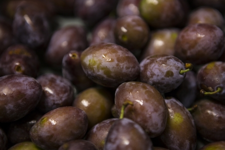pflanzen: Ripe plums with drops of water close-up