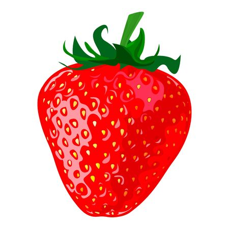 Ripe berry a strawberry on a white background - Vector illustration Illusztráció