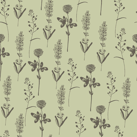 soiled: Floral seamless pattern with herbs.