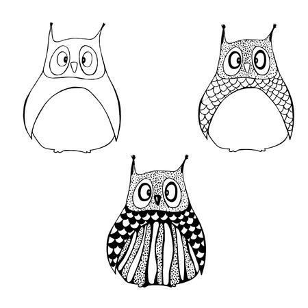 sowa: Trzy etapy rysunek sowy. Ilustracja