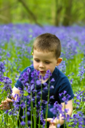 Boys playing in magical bluebell woods