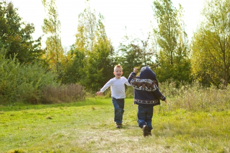 brothers playing in the summer meadow Stock Photo - 15945850