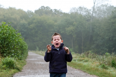 little boy crying out in the woods Stock Photo - 15945786