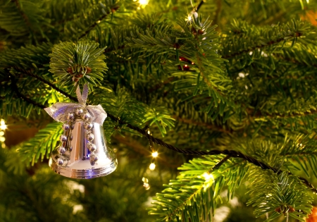 christmas bell hanging on the christmas tree Stock Photo - 16803353