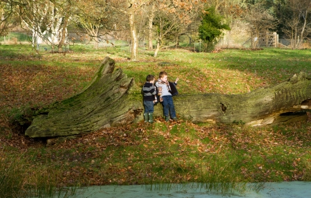 two little boys playing in the countryside Stock Photo