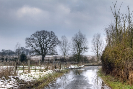 rural road with low level winter flood water photo