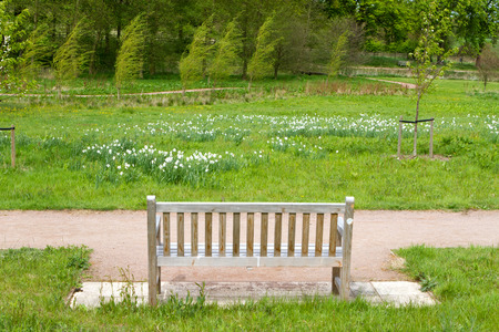 bench in an English Countryside scene photo
