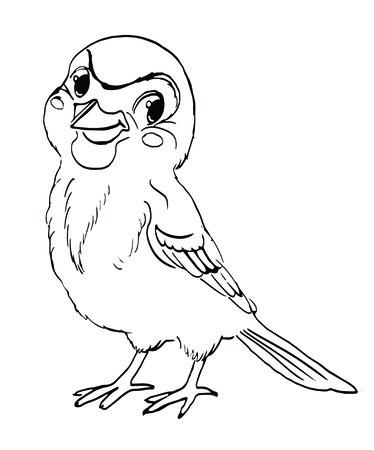 sparrow: Sparrow, bird, character