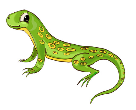 one of a kind: Lizard. Cute character, concept on white back Stock Photo