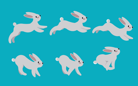 Animation cycle of running a hare.Rabbit motion pose