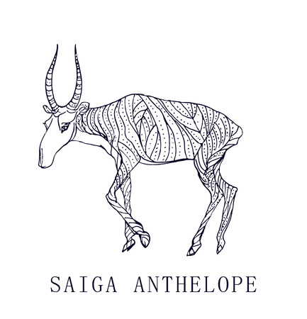 Saiga antelope.Rare animal, conservation status. Illusztráció