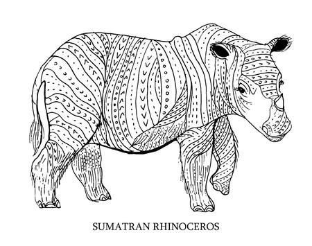 sumatran: Sumatran rhinoceros. Rare animal, conservation status. Vector illustration
