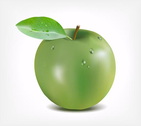Green apple with water drops - Gradient Mesh Illusztráció