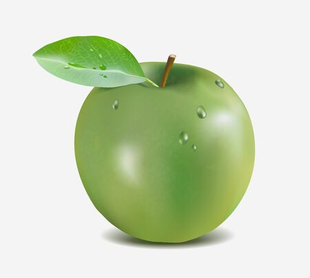 Green apple with water drops - Gradient Mesh vector illustration