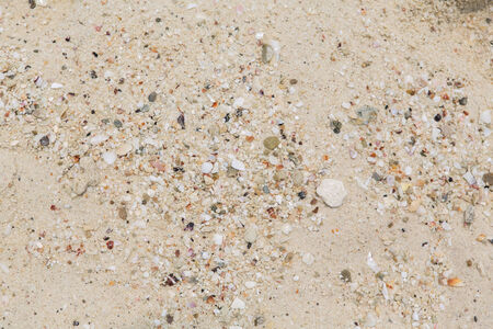 Texture of a white sand beach in sunny day photo