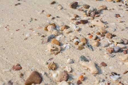 Sea sand texture made of shell and stone pieces photo
