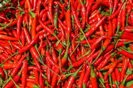 chiles picantes: Red Hot Chili Peppers, vista de cerca y de textura Foto de archivo