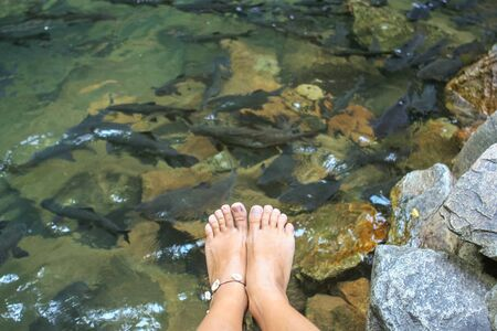 sopping: Young womans feet infront of the water with many fish Stock Photo