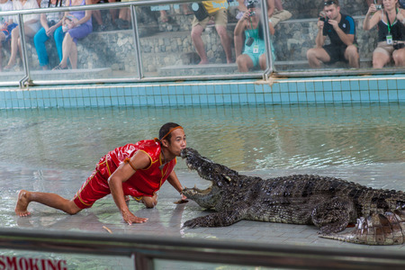 samutprakarn: SAMUTPRAKARN,THAILAND - NOVEMBER 16, 2012 :: crocodile show at crocodile farm on November 16, 2012 in Samutprakarn,Thaila nd. This exciting show is very famous among among tourist and Thai people Editorial