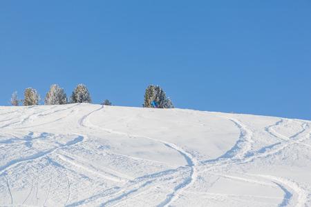powder snow: Fresh ski and snowboard tracks in powder snow Stock Photo