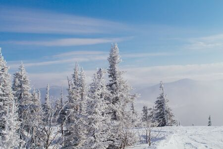 Beautiful winter mountain landscape with snow covered trees