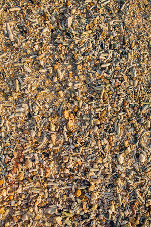 Sea sand texture made of shell and stone pieces Stock Photo