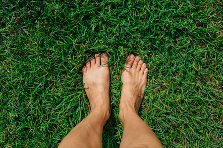 Bare woman's feet on the green grass Banque d'images