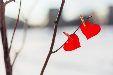 Two red hearts on clothespin on the tree branch outdoors. Blured winter background. Valentine's Day theme.