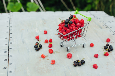 Mini shopping basket full of fresh red ripe raspberry and blackberry on old grey vintage background in garden. Copy space