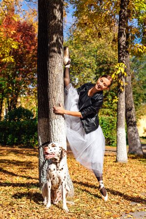 Ballerina with Dalmatian dog in the golden autumn park. Woman ballerina in a white ballet skirt and black leather jacket doing splits in pointe shoes in autumn park with her spotty dalmatian dog. Stock Photo - 130912850