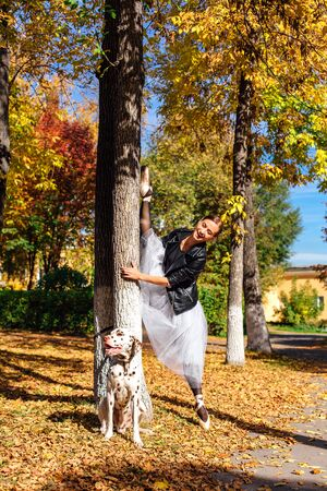 Ballerina with Dalmatian dog in the golden autumn park. Woman ballerina in a white ballet skirt and black leather jacket doing splits in pointe shoes in autumn park with her spotty dalmatian dog. Stock Photo