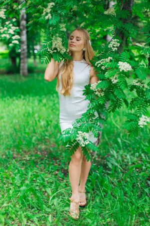 Spring portrait of a charming blond woman wearing beautiful white dress standing next to blooming rowan tree with white flowers.