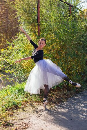 Woman ballerina in a white ballet skirt dancing in pointe shoes next to rabitz fence in a golden autumn park. Ballerina standing in beautiful ballet pose Stock Photo