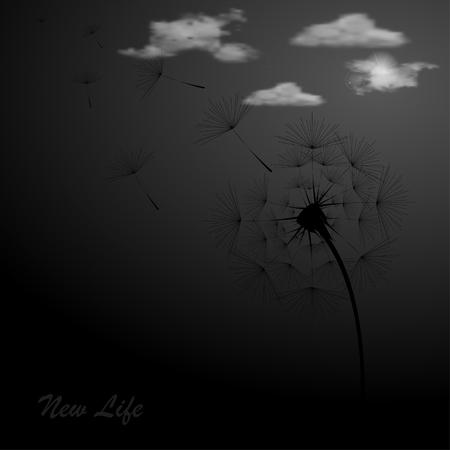pistil: Illustration with black dandelion on black background Illustration