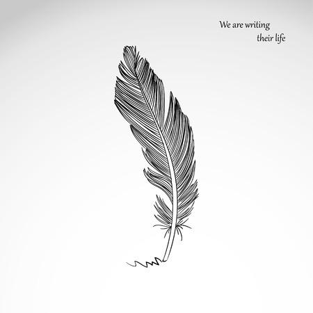 Vector dibujo a mano alzada de pluma de pájaro oscuro aislado sobre fondo gris