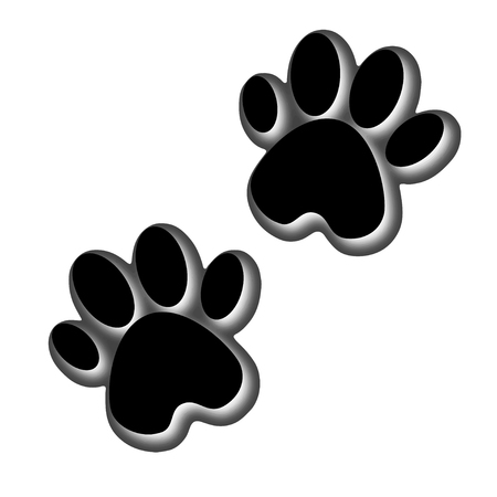 3D illustration. Animals footprint. Footprint dog or cat in flat design. Pow print animals