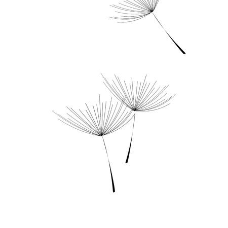 Flying dandelion. Dandelion fluff on blank background. Eps10
