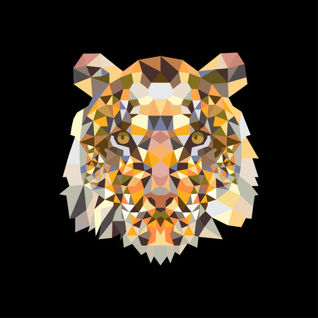 Head Lion in colorful triangle design on black background. Eps10 Banco de Imagens - 119419834