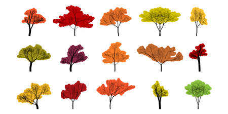 Tree. Autumn trees different shape and color. Autumn tree, isolated. Trees in flat modern design. Vector illustration