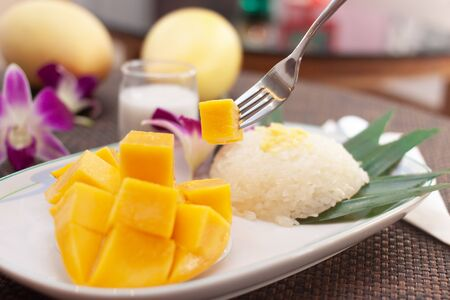 Sticky rice and sliced mango with coconut cream and fork is Thai food dessert on white dish