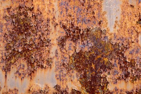 Rust door Stock Photo - 8706471