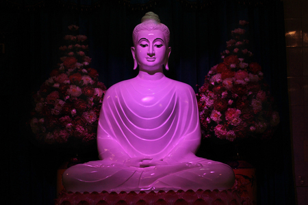 jade buddha temple: White Jade Buddha statue with puple light in main buddhist building of Temple, Wat Bumpeannua ,Bangkok,Thailand.