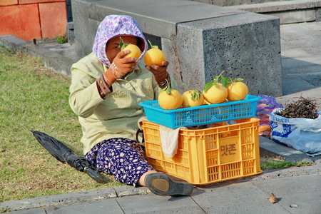 Jeju island,May 5,Housewife sit selling oranges and herb on the wayside at Jeju island, Korea on May 25,2014 Editorial